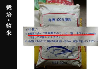 いのちの壱 栽培・精米